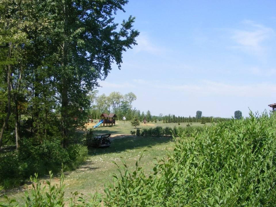 csaladi-majalis-ama-tehetsegpont-reszvetelevel11